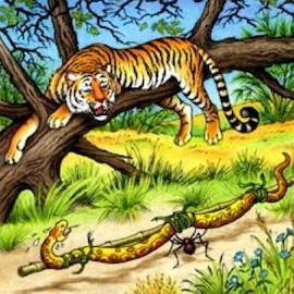 Anansi the spider, tiger and snake